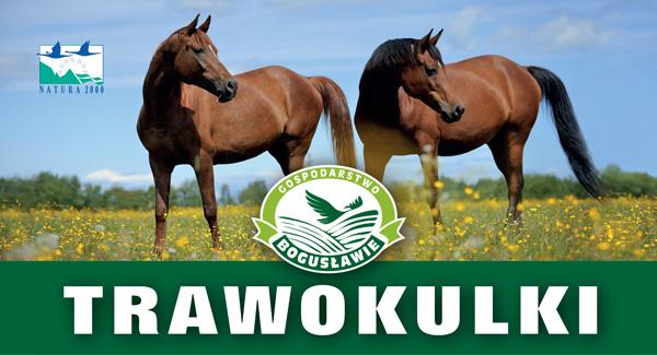 trawokulki-small
